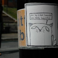 JJ Steeves Stray Kitties in the City